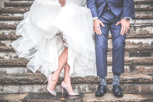 wesele z krówkami